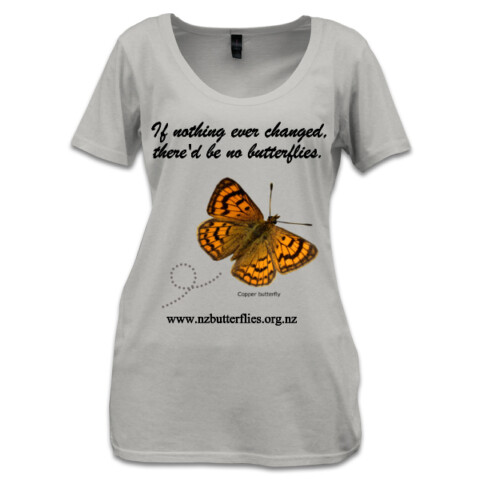 'If nothing ever changed' - Moths and Butterflies of NZ Trust store
